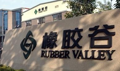 橡胶谷集团四方主办,青岛科技大学合办,致力于强化高分子材料及其相关